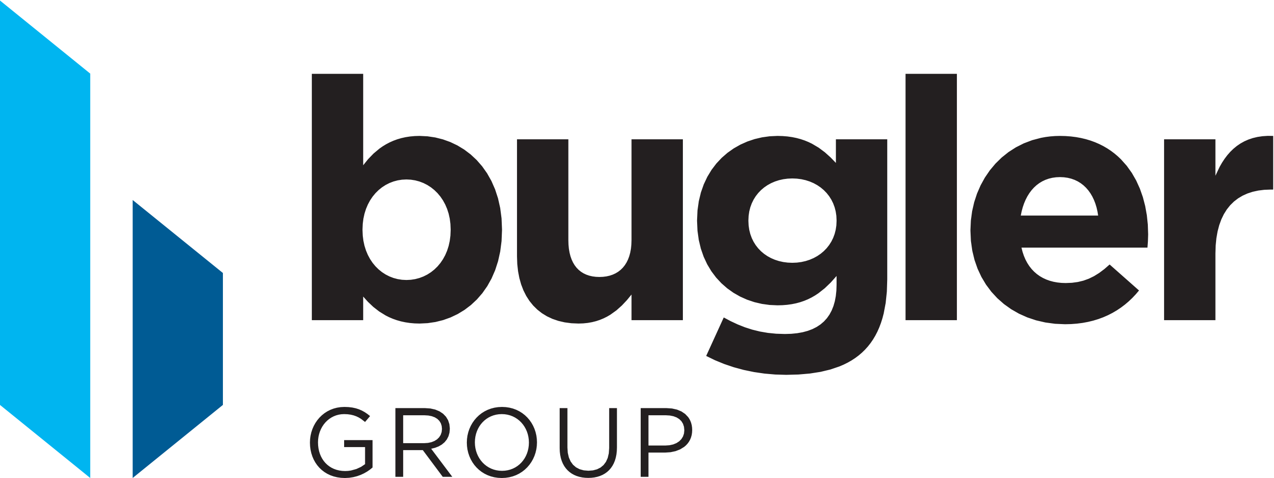 Logo for Bugler Group